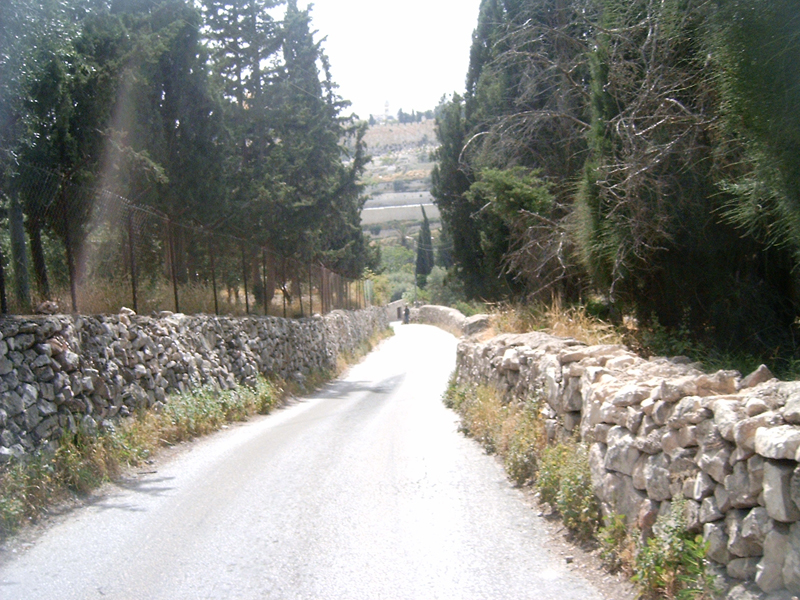 MagPro Photo of the Day: The Descent of the Mount of Olives  This may have been the path that Yeshua (Jesus) took while heading toward Jerusalem. Luke 19:37-38,