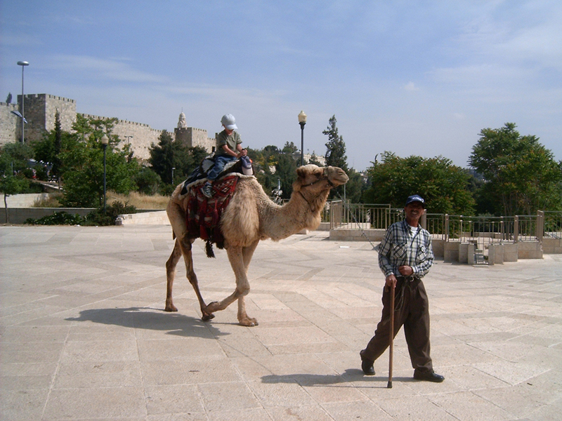 MagPro Photo of the Day: The Angry Camel Series (1 of 6)  The angry camel seems to say, 'I'm an angry camel, but this kid's light, and I'm looking forward to a nice break when he's finished with his ride. Interested camel tour riders, please give me rest; I'm a little tired now.'  Photo taken in Jerusalem, Israel, outside of the Yaffa Gate. More photos? Visit Photos.MagPro.org
