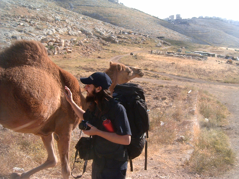 Hernes McGrath trying to make friends with Mr. Camel, ignoring the possibly that Mr. Camel and his friends might have entertained the thought of attacking us, while Misop and Hermes were walking to Jerico, Palestine from Mount of Olives, Israel.